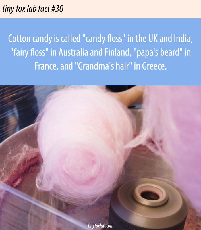 Cotton Candy Names