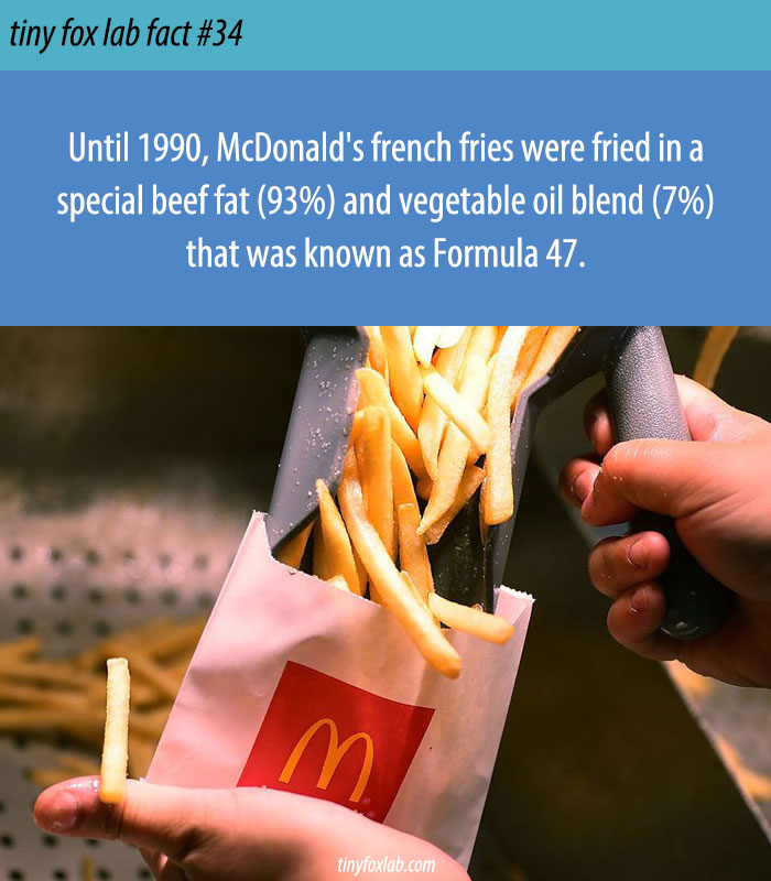 McDonald's French Fries Taste Different