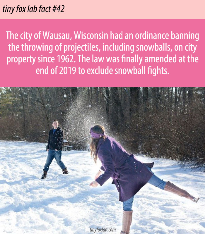 Wisconsin City End Its Old Ban On Snowball Fights