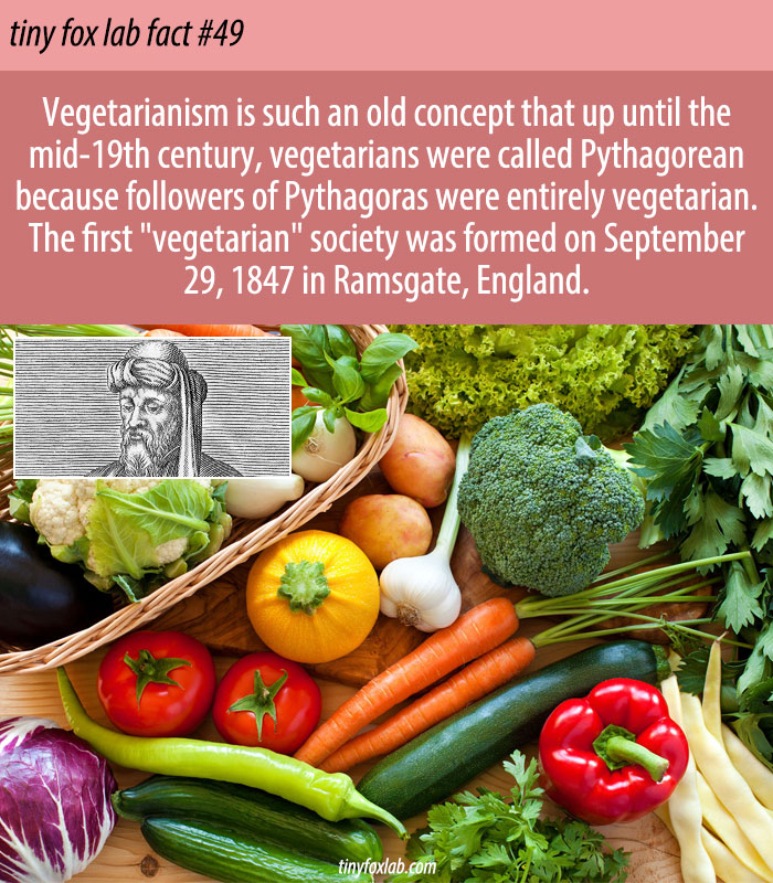 The History of Vegetarianism