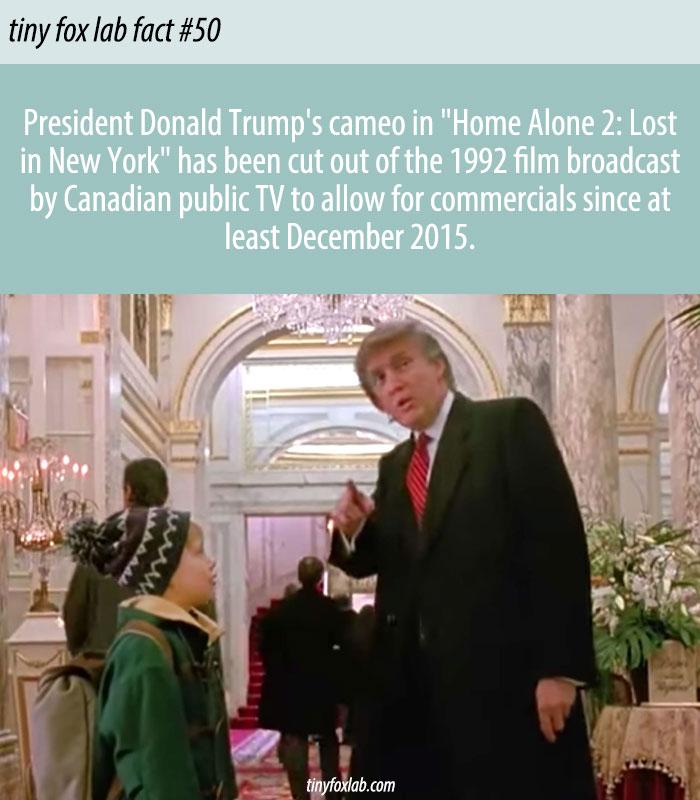 Trump Cameo Cut in Home Alone 2