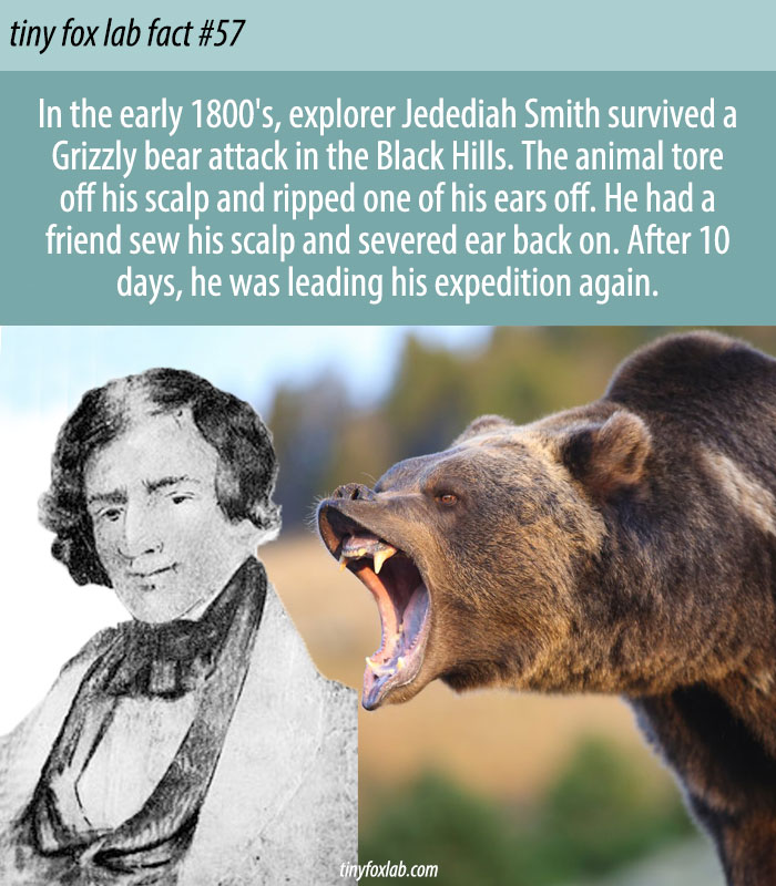 Jedediah S. Smith Fact