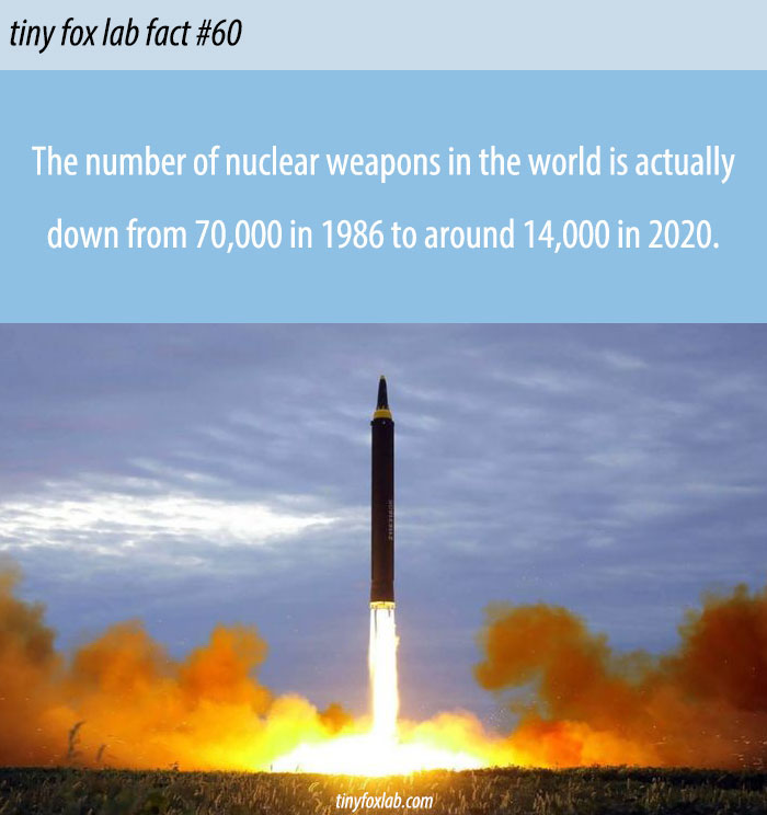 Nuclear Weapon Reduction
