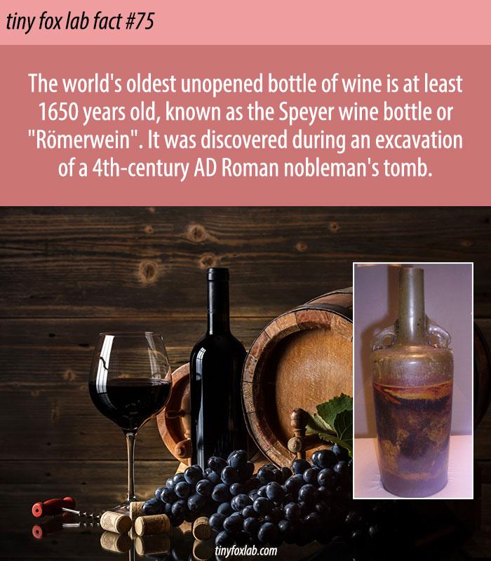 World's Oldest Unopened Wine