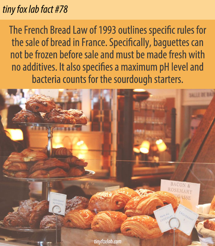 The French Bread Law of 1993