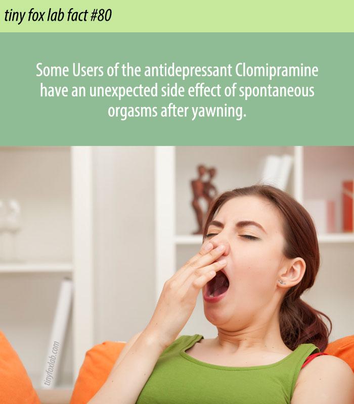 Yawn Causes Orgasm