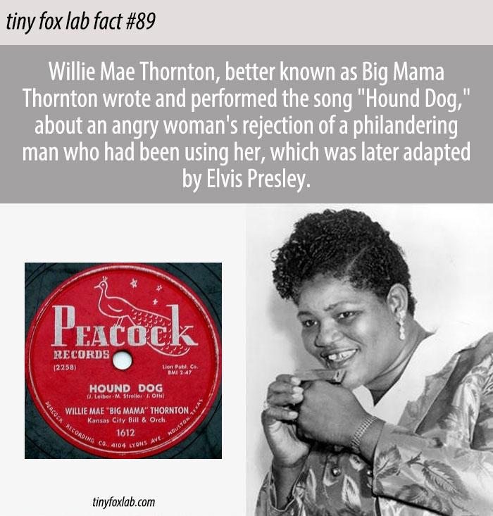 Big Mama's Hound Dog