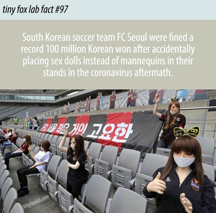 Dolls in Soccer Stands