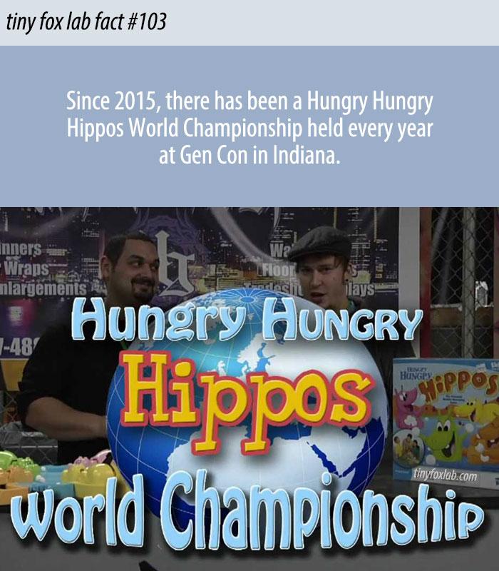 Hungry Hungry Hippos World Championship