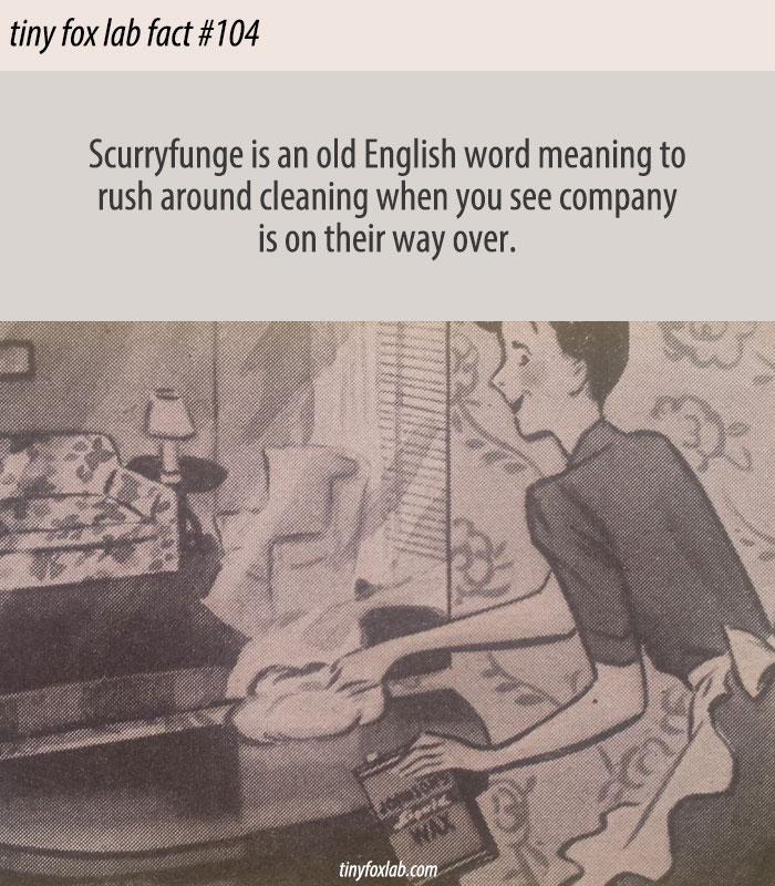 Scurryfunge - Old English