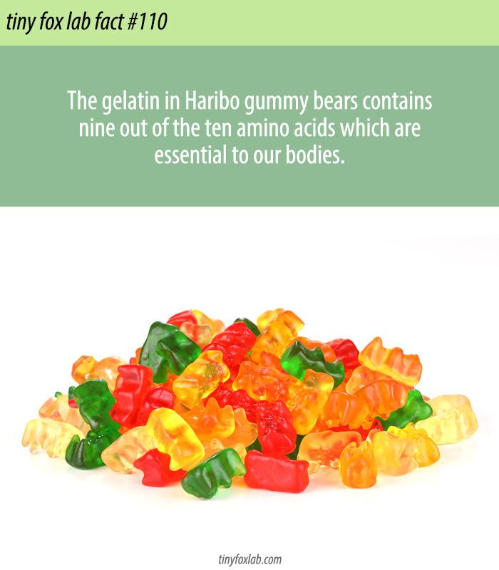 Superfood Gummy Bears