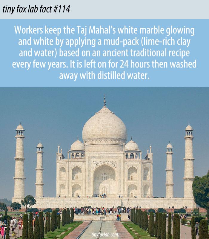 India's Taj Mahal Gets a Facial