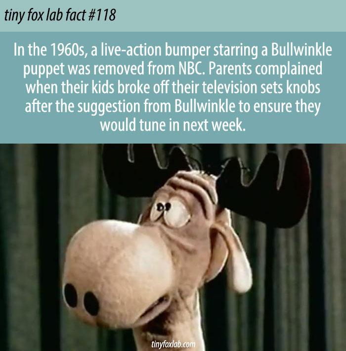 Naughty Bullwinkle Puppet