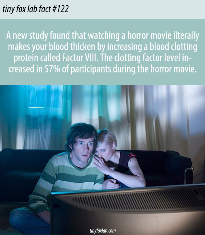 Horror Movies Can Actually Curdle Your Blood