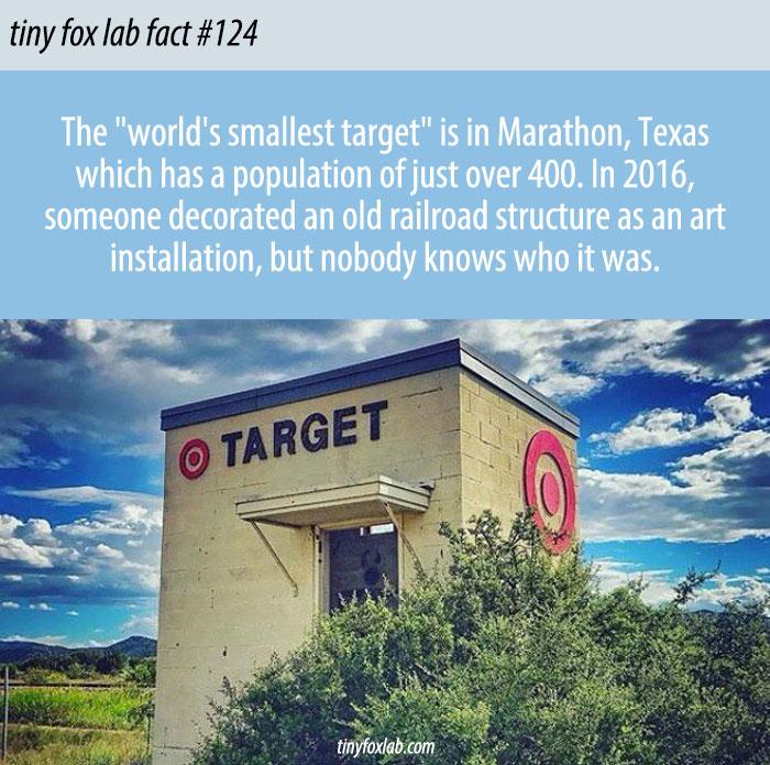 World's Smallest Target