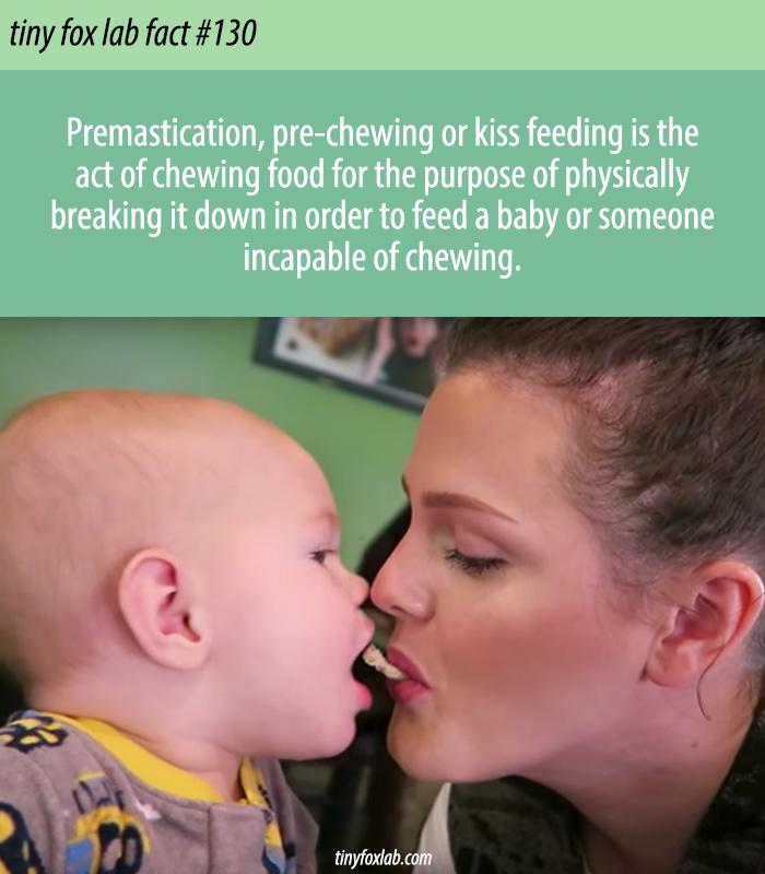 Kiss Feeding