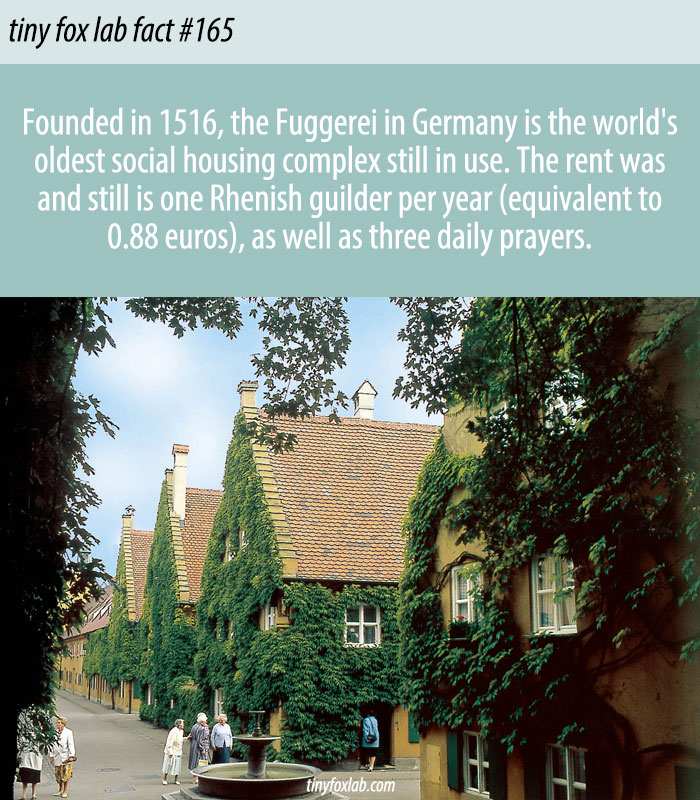 The World's Oldest Housing Complex