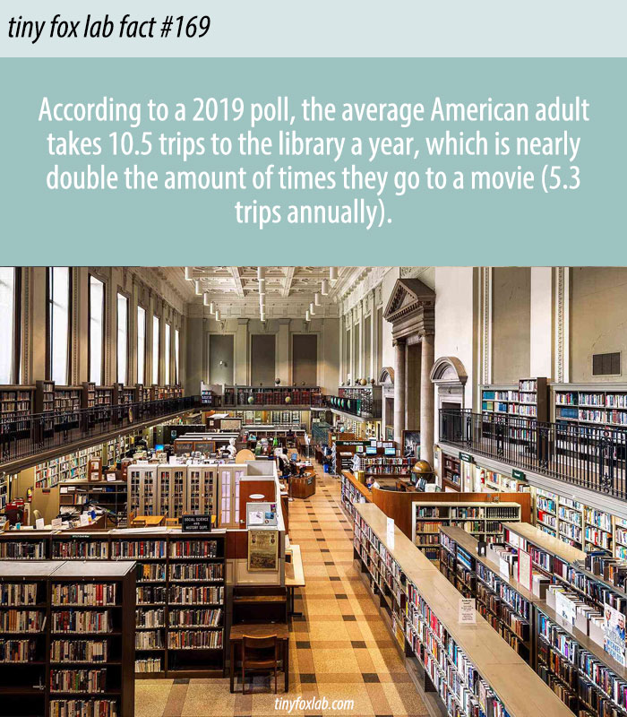 Library Visits Outpaced Trips to Movies