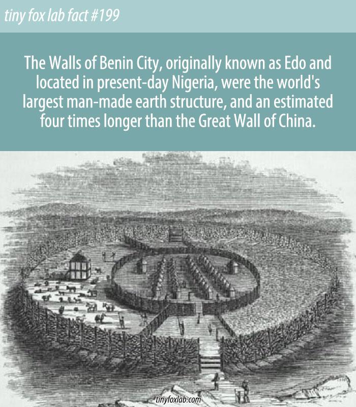 The Great Benin Wall