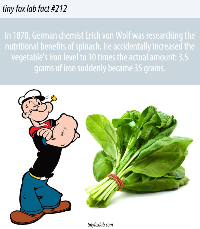 Spinach Iron Levels Nutrition Myths