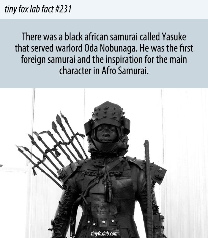 The First Non Japanese Samurai