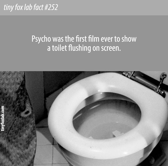 Psycho was the first film ever to show a toilet flushing on screen.