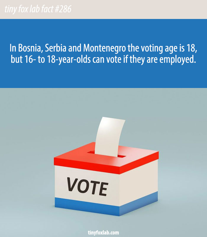 In Bosnia, Serbia and Montenegro 16- to 18-year-olds can vote if they have jobs.