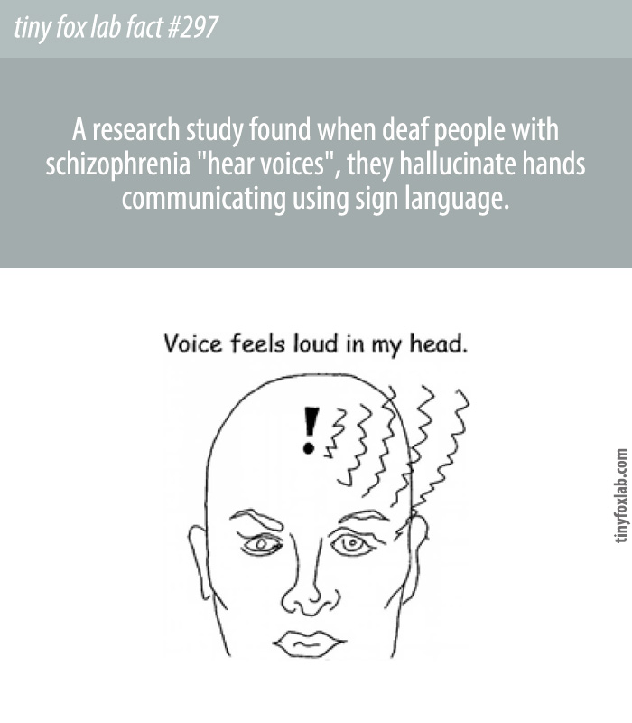 When deaf people with schizophrenia