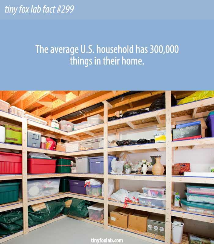 There are 300,000 items in the average American home.