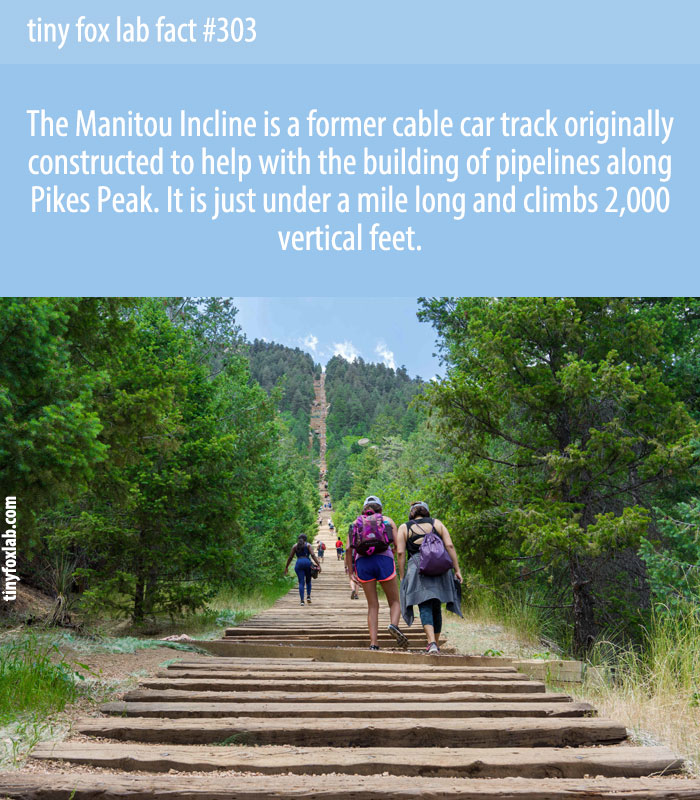 The Manitou Incline is just under a mile but climbs 2,000 vertical feet.