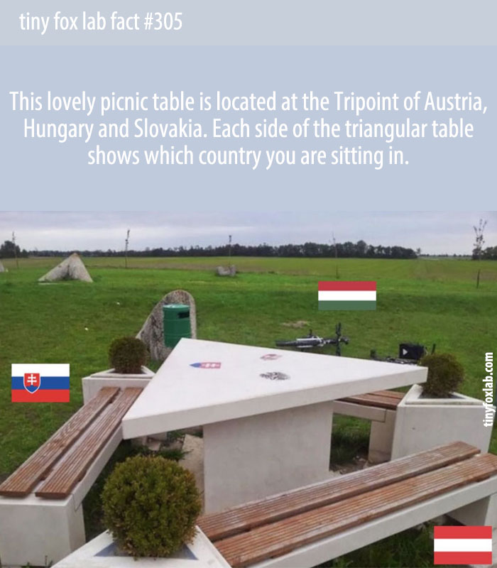 There's a triangle picnic table at the tripoint of Austria, Hungary, and Slovakia.