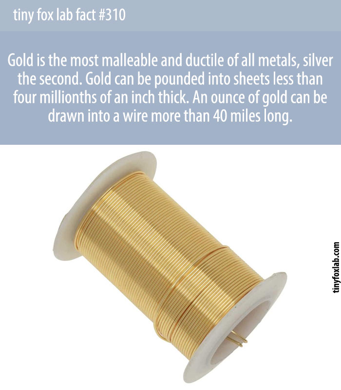 Gold is an inert noble metal as it does not react with other elements. It is the most malleable and ductile of all known metals.