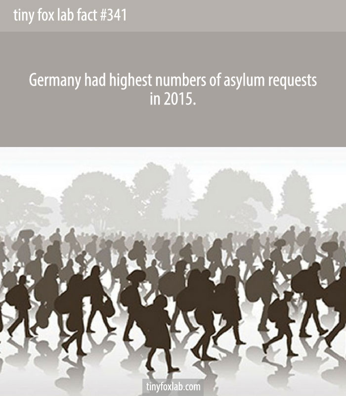 Germany had highest numbers of asylum requests in 2015.