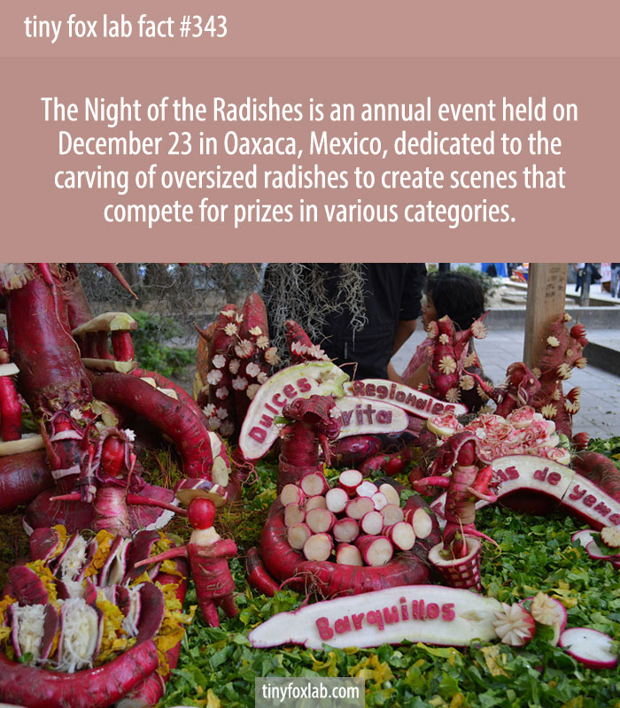 The Night of the Radishes is an annual event held on December 23 in Oaxaca, Mexico, dedicated to the carving of oversized radishes to create scenes that compete for prizes in various categories.