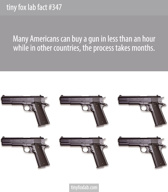 Many Americans can buy a gun in less than an hour while in other countries, the process takes months.