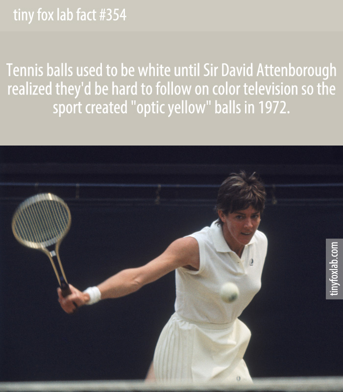 Tennis balls used to be white until Sir David Attenborough realized they'd be hard to follow on color television so the sport created 'optic yellow' balls in 1972.