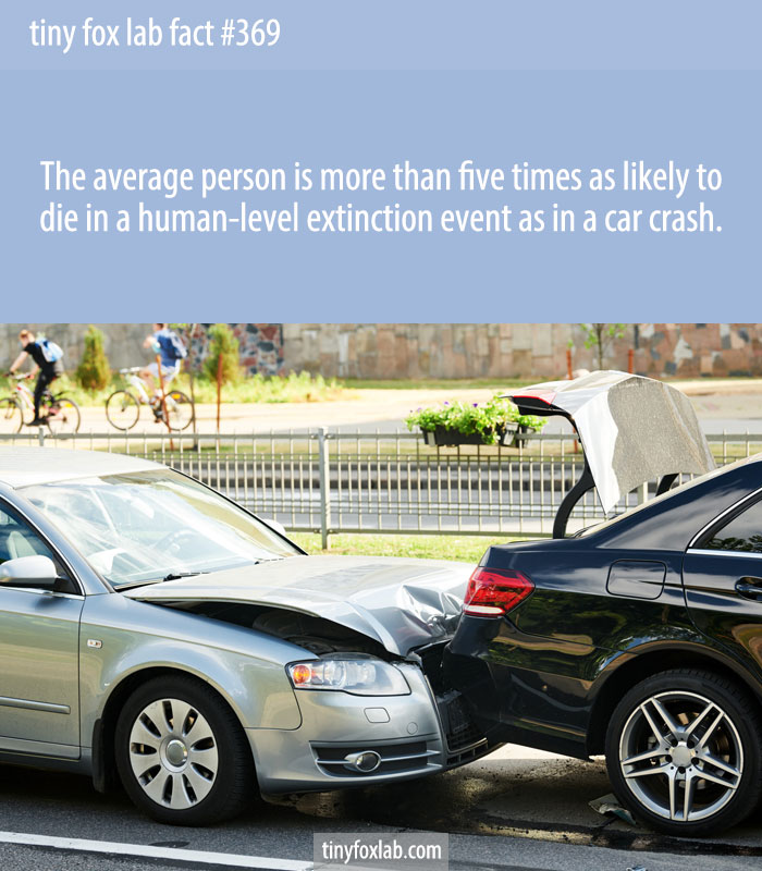 The average person is more than five times as likely to die in a human-level extinction event as in a car crash.