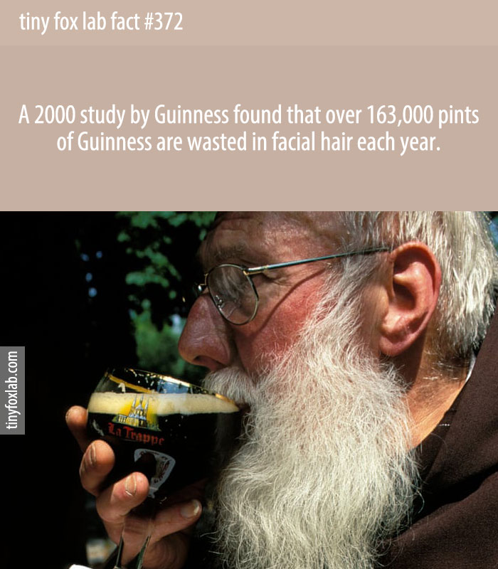 A 2000 study by Guinness found that over 163,000 pints of Guinness are wasted in facial hair each year.
