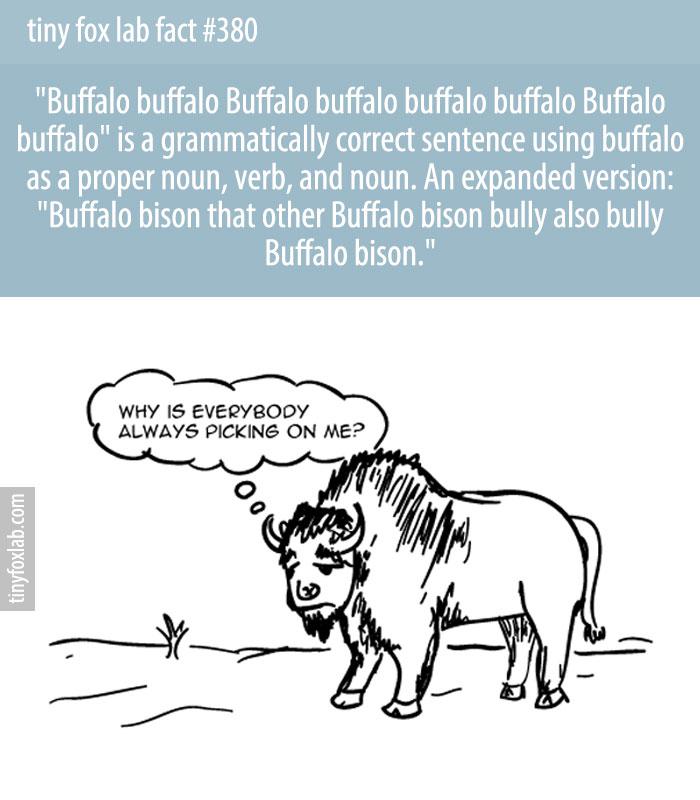 'Buffalo buffalo Buffalo buffalo buffalo buffalo Buffalo buffalo' is a sentence that uses correct grammar.