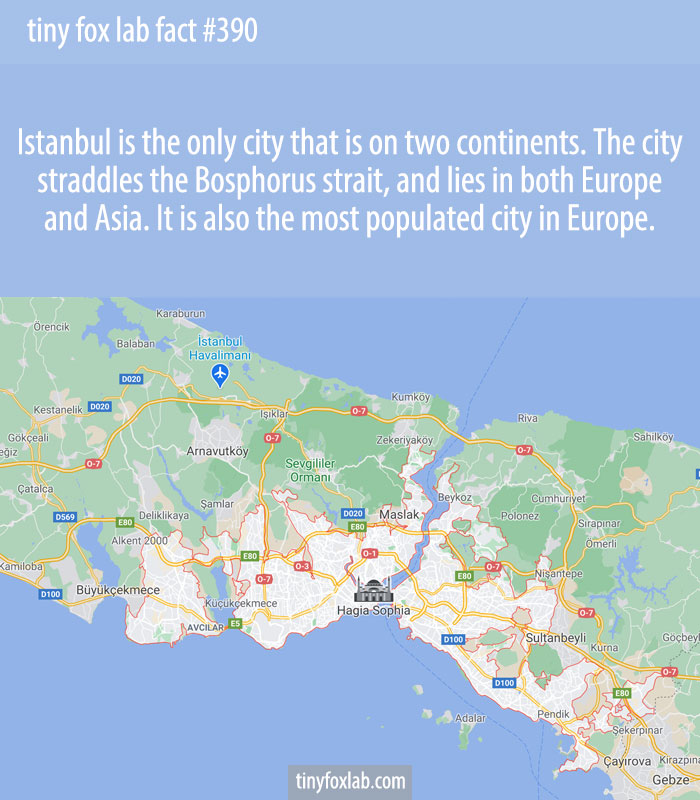 Istanbul is the only city that is on two continents. The city straddles the Bosphorus strait, and lies in both Europe and Asia. It is also the most populated city in Europe.