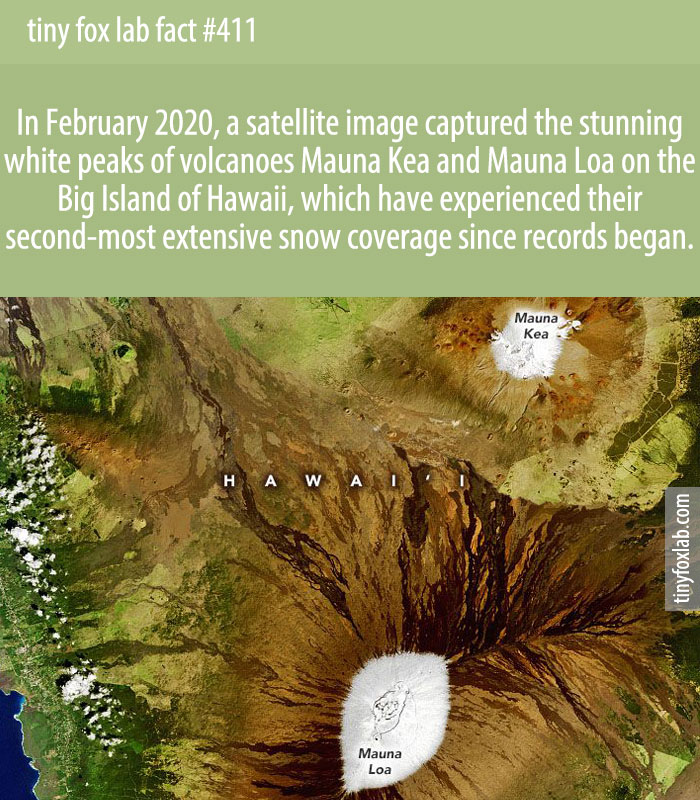 In February 2020, a satellite image captured the stunning white peaks of volcanoes Mauna Kea and Mauna Loa on the Big Island of Hawaii, which have experienced their second-most extensive snow coverage since records began.