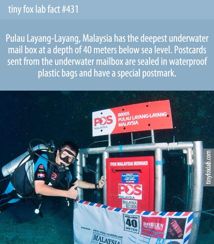 Pulau Layang-Layang, Malaysia has the deepest underwater mail box at a depth of 40 meters below sea level. Postcards sent from the underwater mailbox are sealed in waterproof plastic bags and have a special postmark.