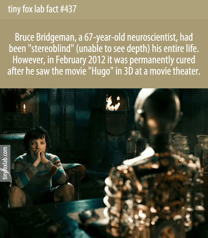 Bruce Bridgeman, a 67-year-old neuroscientist, had been 'stereoblind' (unable to see depth) his entire life. However, in February 2012 it was permanently cured after he saw the movie 'Hugo' in 3D at a movie theater.