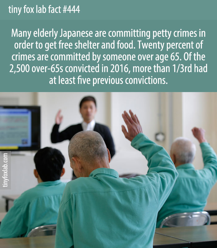 Many elderly Japanese are committing petty crimes in order to get free shelter and food. Twenty percent of crimes are committed by someone over age 65. Of the 2,500 over-65s convicted in 2016, more than 1/3rd had at least five previous convictions.