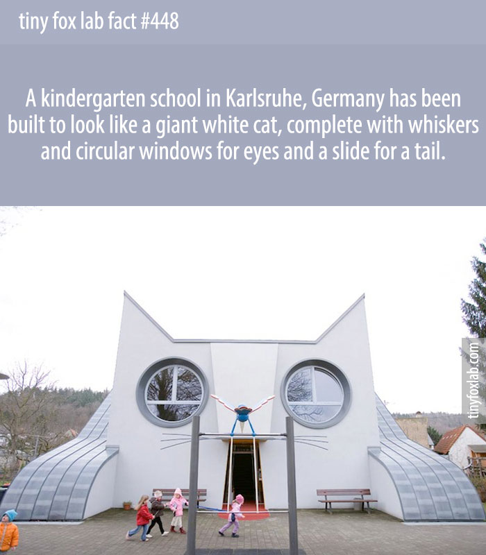 A kindergarten school in Karlsruhe, Germany has been built to look like a giant white cat, complete with whiskers and circular windows for eyes and a slide for a tail.
