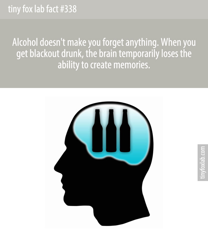 Alcohol doesn't make you forget anything. When you get blackout drunk, the brain temporarily loses the ability to create memories.